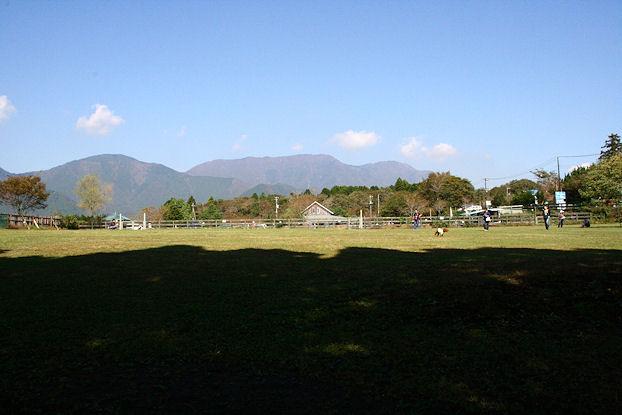 20111010_002