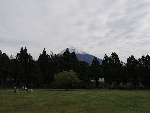 20131019_010